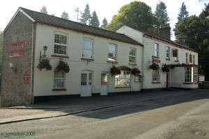 Fountain Inn, Parkend