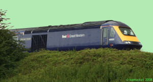 FGW strolling through the grass