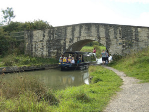 Dragonfly passing Beavan's Bridge. Photo © komadori.